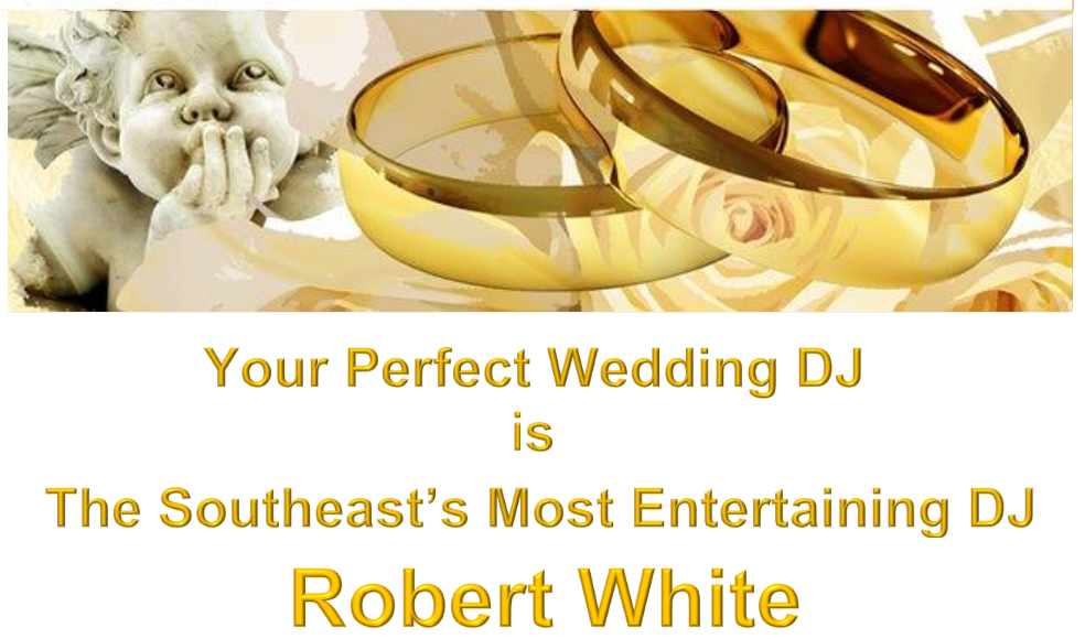 Wedding Dj Fun Times By Robert White