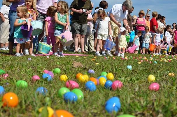 Field_Kids_Eggs